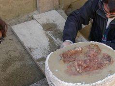 Para peneliti mengangkat sisa-sisa jenazah bayi kembar dari sebuah pemakaman kuno di Krems-Wachtberg, Austria. (Orea Öaw)