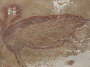 lukisan gua babi kutil sulawesi